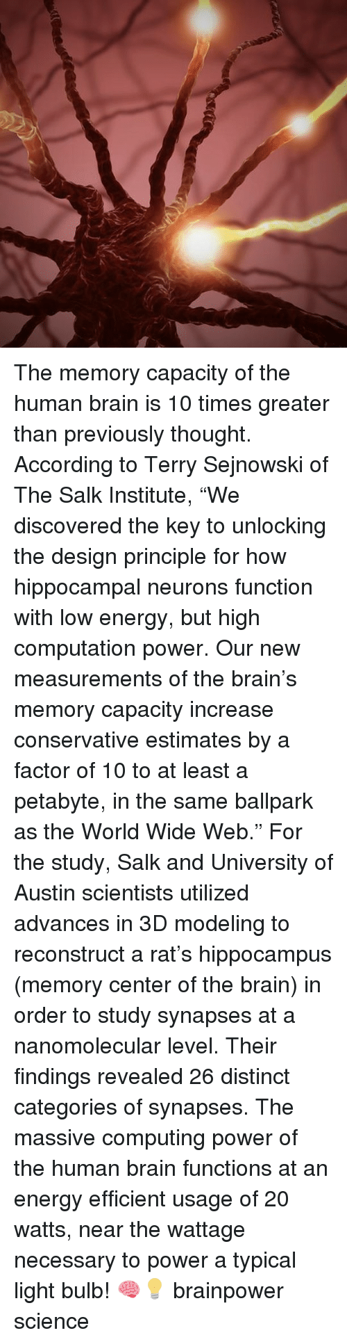 "computing: The memory capacity of the human brain is 10 times greater than previously thought. According to Terry Sejnowski of The Salk Institute, ""We discovered the key to unlocking the design principle for how hippocampal neurons function with low energy, but high computation power. Our new measurements of the brain's memory capacity increase conservative estimates by a factor of 10 to at least a petabyte, in the same ballpark as the World Wide Web."" For the study, Salk and University of Austin scientists utilized advances in 3D modeling to reconstruct a rat's hippocampus (memory center of the brain) in order to study synapses at a nanomolecular level. Their findings revealed 26 distinct categories of synapses. The massive computing power of the human brain functions at an energy efficient usage of 20 watts, near the wattage necessary to power a typical light bulb! 🧠💡 brainpower science"