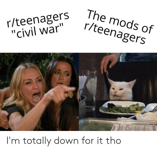 The Mods of Rteenagers Rteenagers Civil War I'm Totally Down