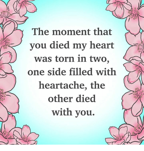 Memes, Heart, and 🤖: The moment that  vou died my heart  was torn in two,  one side filled with  heartache, the  other died  with you.  0  0
