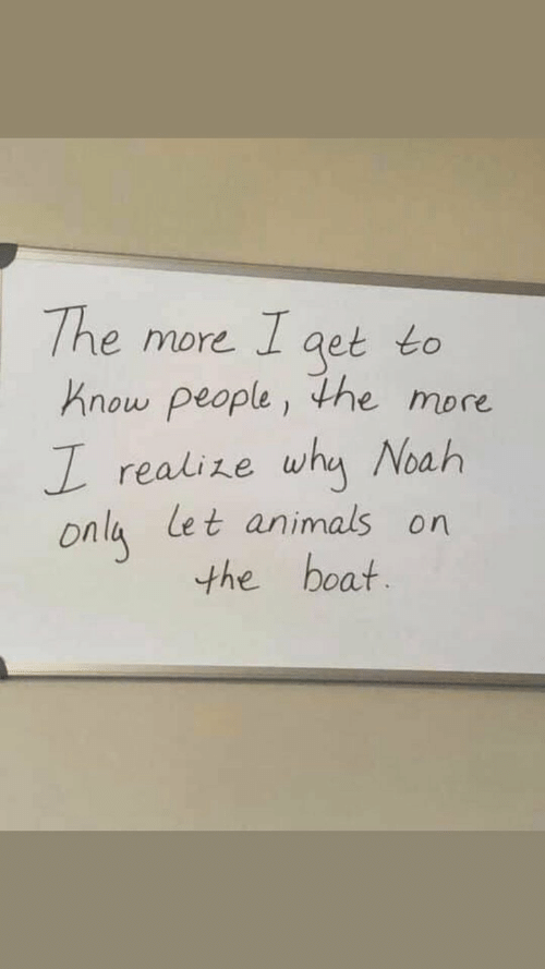 Noah: The more I aet to  Know people, the more  realize why Noah  Onla Let animals on  the boat