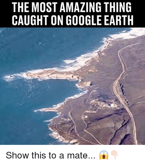 Google, Memes, and Earth: THE MOST AMAZING THING  CAUGHT ON GOOGLE EARTH Show this to a mate... 😱👇🏻
