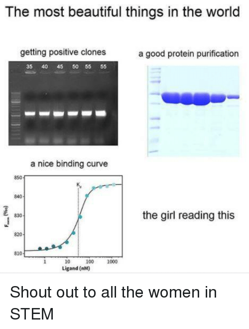 Anaconda, Beautiful, and Curving: The most beautiful things in the world  getting positive clones  a good protein purification  35 40 45 50 55 55  a nice binding curve  850  840  the girl reading this  乙 830  820  810  10 100 1000  Ligand (nM) Shout out to all the women in STEM