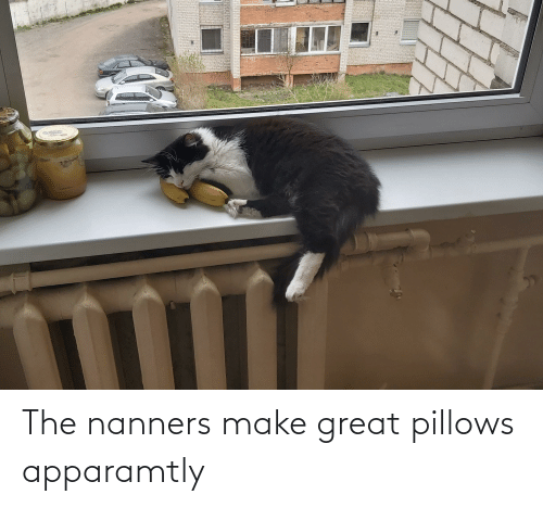 pillows: The nanners make great pillows apparamtly