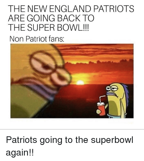 England, New England Patriots, and Patriotic: THE NEW ENGLAND PATRIOTS  ARE GOING BACK TO  THE SUPER BOWL!!  Non Patriot fans: Patriots going to the superbowl again!!