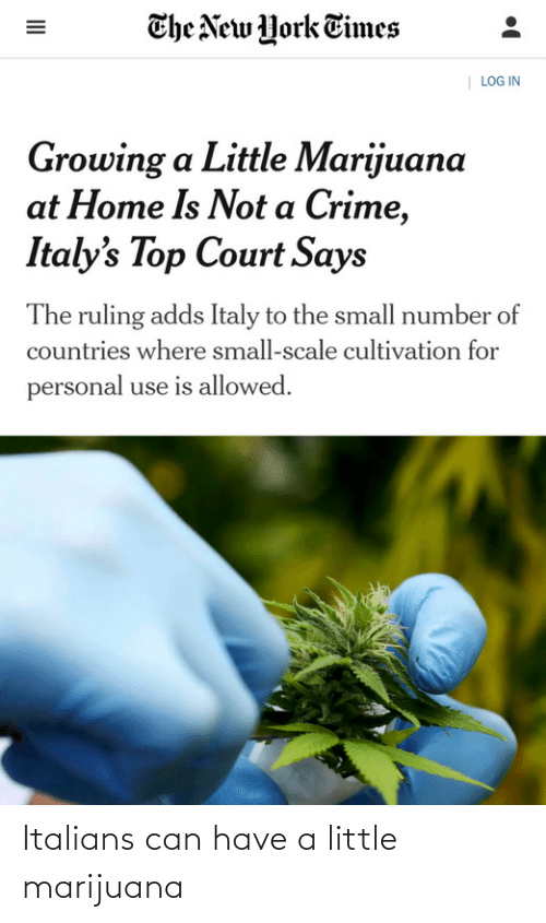 york: The New York Times  | LOG IN  Growing a Little Marijuana  at Home Is Not a Crime,  Italy's Top Court Says  The ruling adds Italy to the small number of  countries where small-scale cultivation for  personal use is allowed.  II Italians can have a little marijuana