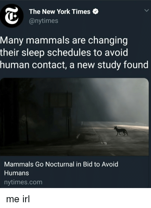 nocturnal: The New York Times  @nytimes  Many mammals are changing  their sleep schedules to avoid  human contact, a new study found  Mammals Go Nocturnal in Bid to Avoid  Humans  nytimes.com me irl