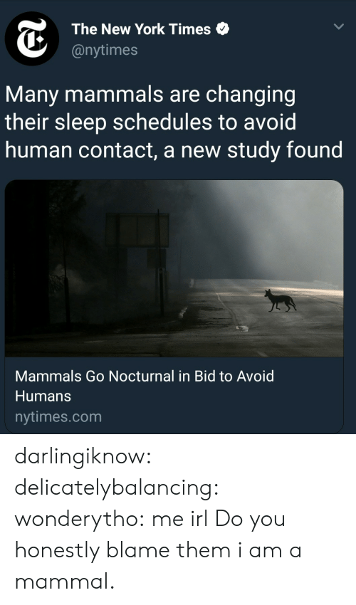 nocturnal: The New York Times  @nytimes  Many mammals are changing  their sleep schedules to avoid  human contact, a new study found  Mammals Go Nocturnal in Bid to Avoid  Humans  nytimes.com darlingiknow:  delicatelybalancing:  wonderytho: me irl Do you honestly blame them   i am a mammal.