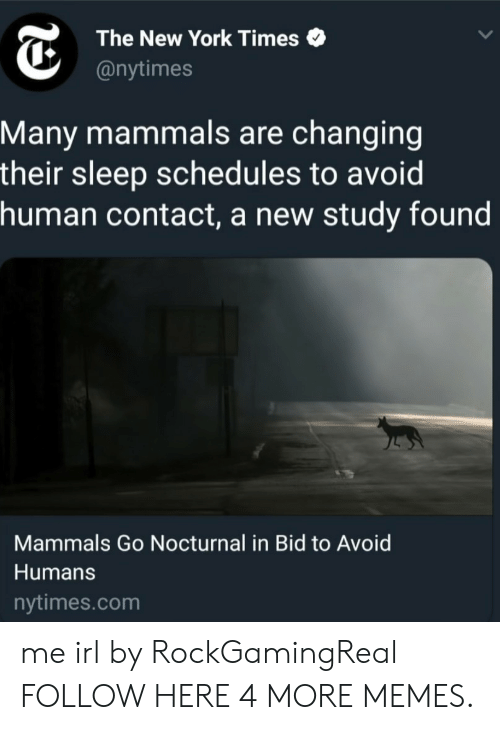 nocturnal: The New York Times  @nytimes  Many mammals are changing  their sleep schedules to avoid  human contact, a new study found  Mammals Go Nocturnal in Bid to Avoid  Humans  nytimes.com me irl by RockGamingReal FOLLOW HERE 4 MORE MEMES.