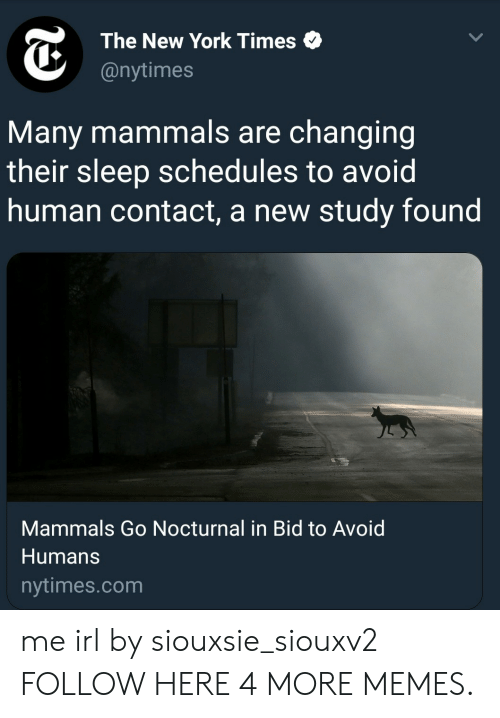 nocturnal: The New York Times  @nytimes  Many mammals are changing  their sleep schedules to avoid  human contact, a new study found  Mammals Go Nocturnal in Bid to Avoid  Humans  nytimes.com me irl by siouxsie_siouxv2 FOLLOW HERE 4 MORE MEMES.