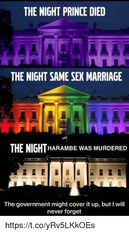 same-sex-marriages: THE NIGHT PRINCE DIED  THE NIGHT SAME SEX MARRIAGE  THE NIGHT  HARAMBE WAS MURDERED  The government might cover it up, but will  never forget https://t.co/yRv5LKkOEs