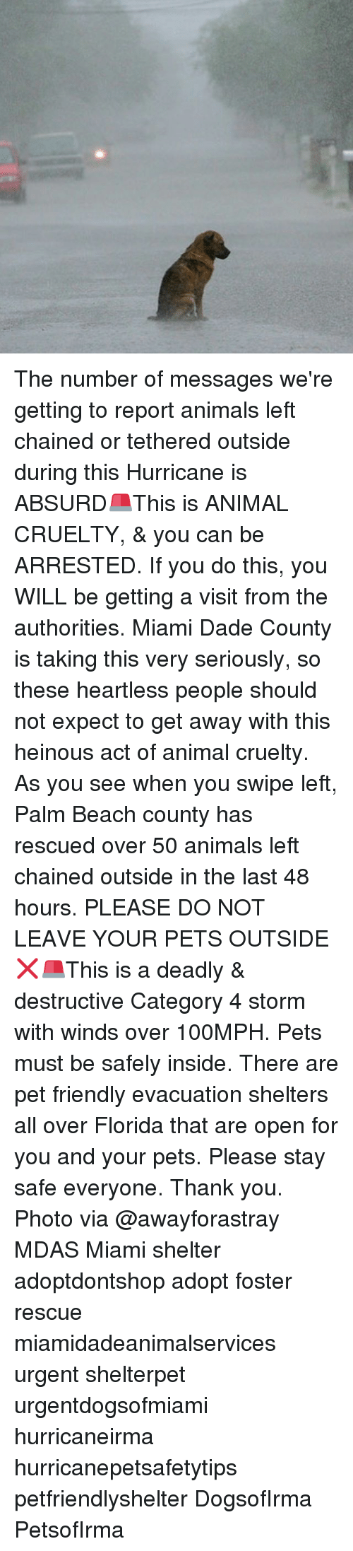 Reportate: The number of messages we're getting to report animals left chained or tethered outside during this Hurricane is ABSURD🚨This is ANIMAL CRUELTY, & you can be ARRESTED. If you do this, you WILL be getting a visit from the authorities. Miami Dade County is taking this very seriously, so these heartless people should not expect to get away with this heinous act of animal cruelty. As you see when you swipe left, Palm Beach county has rescued over 50 animals left chained outside in the last 48 hours. PLEASE DO NOT LEAVE YOUR PETS OUTSIDE❌🚨This is a deadly & destructive Category 4 storm with winds over 100MPH. Pets must be safely inside. There are pet friendly evacuation shelters all over Florida that are open for you and your pets. Please stay safe everyone. Thank you. Photo via @awayforastray MDAS Miami shelter adoptdontshop adopt foster rescue miamidadeanimalservices urgent shelterpet urgentdogsofmiami hurricaneirma hurricanepetsafetytips petfriendlyshelter DogsofIrma PetsofIrma