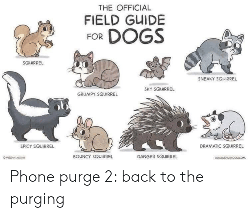 Dogs, Phone, and Squirrel: THE OFFICIAL  FIELD GUIDE  FOR DOGS  SOUIRREL  SNEAKY SQUIRREL  SKY SQUIRREL  GRUMPY SQUIRREL  DRAMATIC SQUIRREL  SPICY SQUIRREL  BOUNCY SQUIRREL  DANGER SQUIRREL  OMEGAN MOKAT  DOOPLEFORFOODCOM Phone purge 2: back to the purging