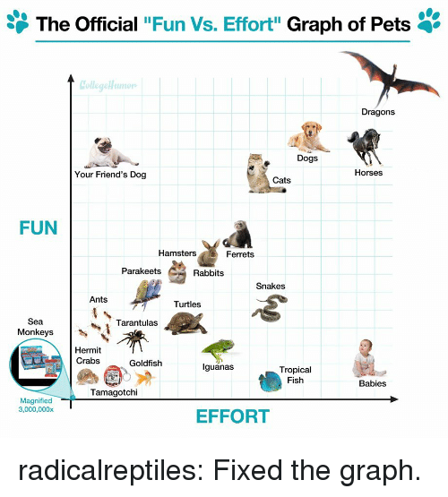 "Cats, Dogs, and Friends: The Official ""Fun Vs. Effort"" Graph of Pets '  Dragons  Dogs  Your Friend's Dog  Horses  Cats  FUN  Hamsters  Ferrets  Parakeets  Rabbits  Snakes  Ants  Turtles  Sea  Monkeys  Tarantulas  Hermit  Crabs  Goldfish  lguanas  Tropical  Fish  Babies  Tamagotchi  Magnified  3,000,000x  EFFORT radicalreptiles:  Fixed the graph."