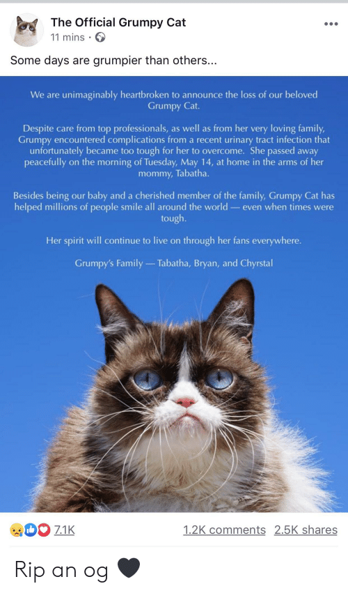 Official Grumpy: The Official Grumpy Cat  11 mins  Some days are grumpier than others..  We are unimaginably heartbroken to announce the loss of our beloved  Grumpy Cat.  Despite care from top professionals, as well as from her very loving family,  Grumpy encountered complications from a recent urinary tract infection that  unfortunately became too tough for her to overcome. She passed away  peacefully on the morning of Tuesday, May 14, at home in the arms of her  mommy, Tabatha.  Besides being our baby and a cherished member of the family, Grumpy Cat has  helped millions of people smile all around the world- even when times were  tough.  Her spirit will continue to live on through her fans everywhere.  Grumpy's Family  Tabatha, Bryan, and Chyrstal  71  1.2K comments 2.5K shares Rip an og 🖤