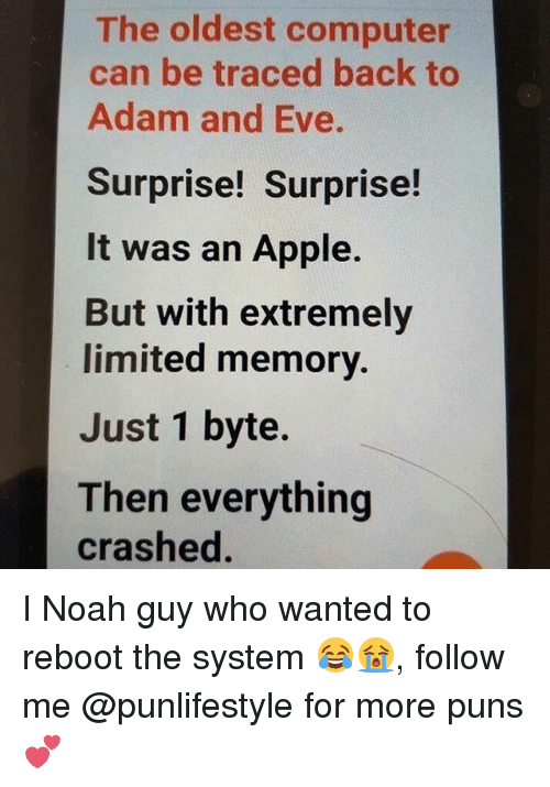 bytes: The oldest computer  can be traced back to  Adam and Eve.  Surprise! Surprise!  It was an Apple.  But with extremely  limited memory.  Just 1 byte.  Then everything  crashed I Noah guy who wanted to reboot the system 😂😭, follow me @punlifestyle for more puns 💕
