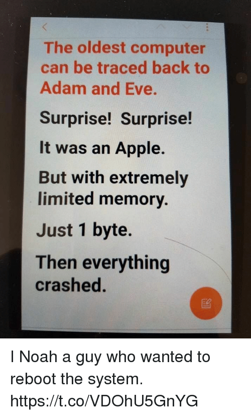 bytes: The oldest computer  can be traced back to  Adam and Eve.  Surprise! Surprise!  It was an Apple.  But with extremely  limited memory.  Just 1 byte.  Then everything  crashed. I Noah a guy who wanted to reboot the system. https://t.co/VDOhU5GnYG