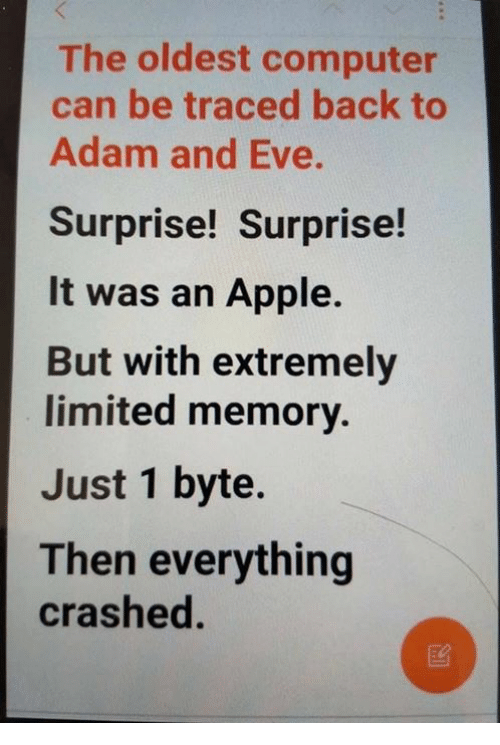 bytes: The oldest computer  can be traced back to  Adam and Eve.  Surprise! Surprise!  It was an Apple.  But with extremely  limited memory.  Just 1 byte.  Then everything  crashed.