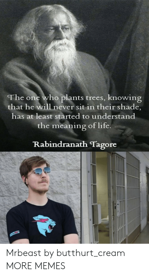 shade: The one who plants trees, knowing  that he will never sit in their shade,  has at least started to understand  the meaning of life  Rabindranath Tagore Mrbeast by butthurt_cream MORE MEMES