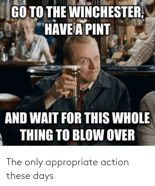 action: The only appropriate action these days