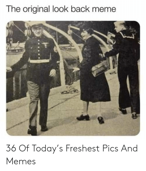 Freshest: The original look back meme 36 Of Today's Freshest Pics And Memes