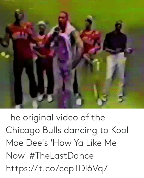 Chicago: The original video of the Chicago Bulls dancing to Kool Moe Dee's 'How Ya Like Me Now' #TheLastDance    https://t.co/cepTDl6Vq7