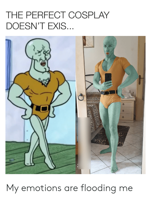 Flooding: THE PERFECT COSPLAY  DOESN'T EXIS... My emotions are flooding me