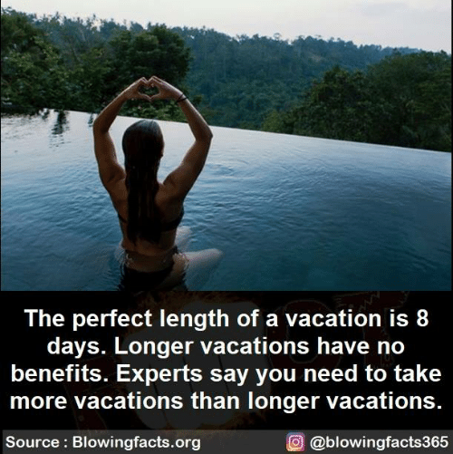 Memes, Vacation, and 🤖: The perfect length of a vacation is 8  days. Longer vacations have no  benefits. Experts say you need to take  more vacations than longer vacations  O @blowingfacts365  Source: Blowingfacts.org