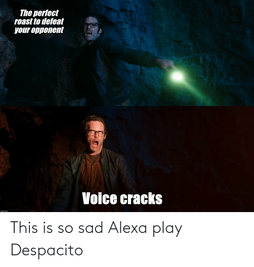 This Is So Sad Alexa Play Despacito: The perfect  roast to defeat  your opponent  Voice cracks  imgflip.com This is so sad Alexa play Despacito