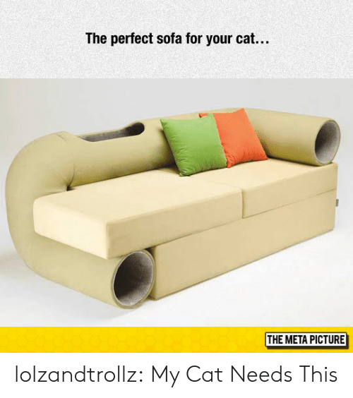 sofa: The perfect sofa for your cat...  THE META PICTURE lolzandtrollz:  My Cat Needs This