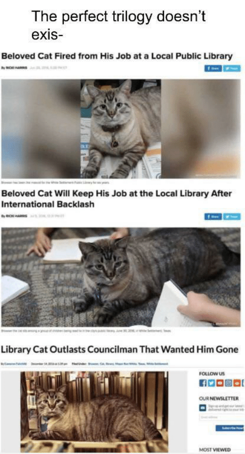 beloved: The perfect trilogy doesn't  exis  Beloved Cat Fired from His Job at a Local Public Library  ax  Beloved Cat Will Keep His Job at the Local Library After  International Backlash  Library Cat Outlasts Councilman That Wanted Him Gone  FOLLOW US  OUR NEWSLETTER  MOST VIEWED