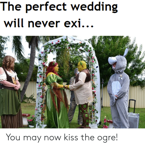 now kiss: The perfect wedding  will never exi... You may now kiss the ogre!