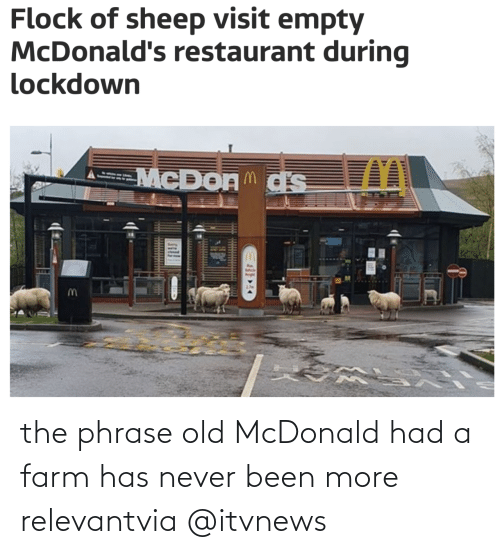 News: the phrase old McDonald had a farm has never been more relevantvia @itvnews
