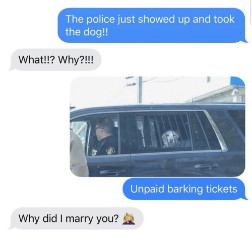Showed Up: The police just showed up and took  the dog!!  What!!? Why?!!!  Unpaid barking tickets  Why did I marry you?