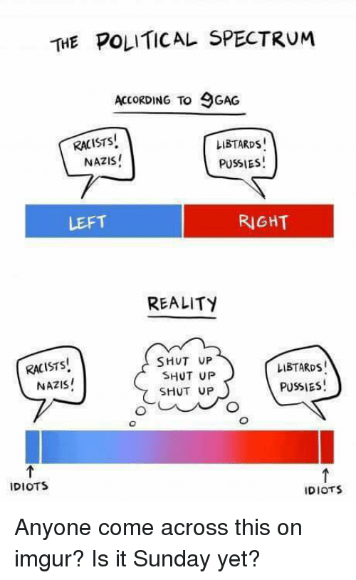 Shut Up, Tumblr, and Imgur: THE POLITICAL SPECTRUM  ACCORDING TO GAG  RACISTS  LIBTARDS!  PUSSIES!  NAZIS!  LEFT  RIGHT  REALITY  RACISTS  NAZIS  SHUT UP  SHUT UP  SHUT UP  LIBTARDS  PUSSIES  IDIOTS  IDIOTS Anyone come across this on imgur? Is it Sunday yet?