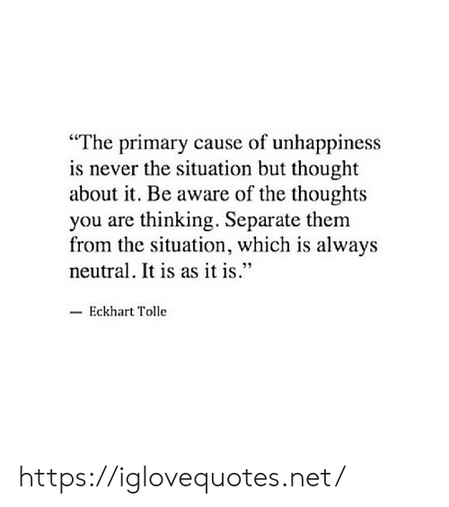 "As It Is: ""The primary cause of unhappiness  is never the situation but thought  about it. Be aware of the thoughts  you are thinking. Separate them  from the situation, which is always  neutral. It is as it is.""  Eckhart Tolle https://iglovequotes.net/"