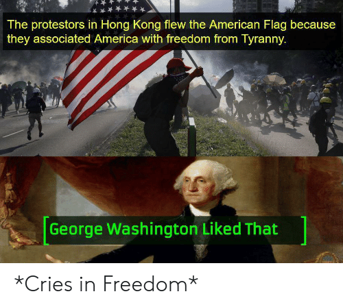 the american: The protestors in Hong Kong flew the American Flag because  they associated America with freedom from Tyranny.  George Washington Liked That *Cries in Freedom*
