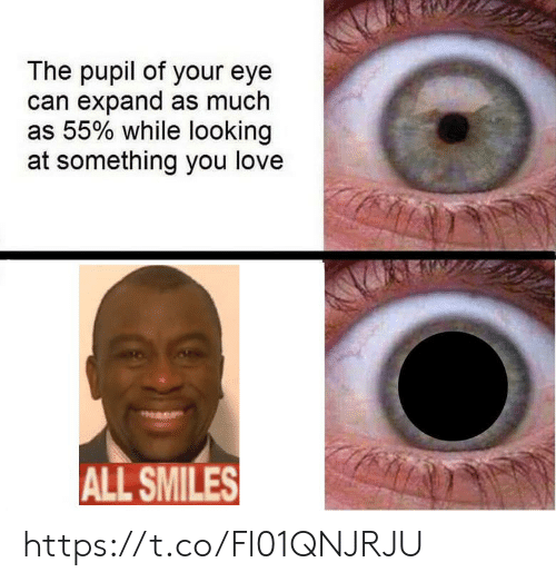 Love, Smiles, and Eye: The pupil of your eye  can expand as much  as 55% while looking  at something you love  ALL SMILES https://t.co/Fl01QNJRJU