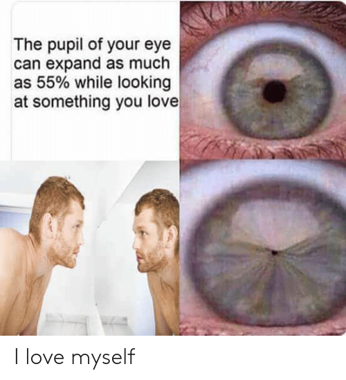 Love, Eye, and Looking: The pupil of your eye  can expand as much  as 55% while looking  at something you love I love myself