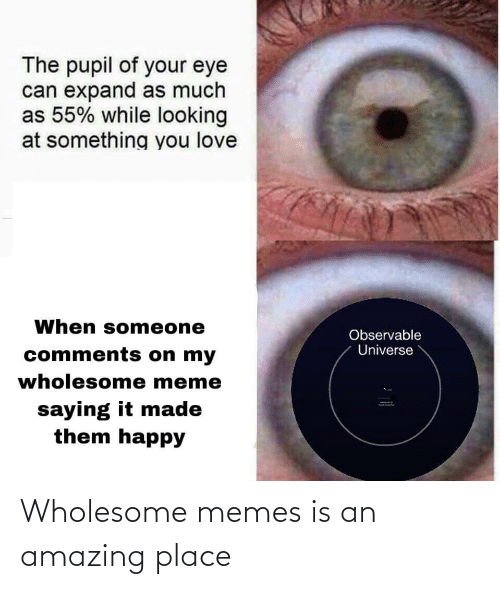 Looking At: The pupil of your eye  can expand as much  as 55% while looking  at something you love  When someone  Observable  Universe  comments on my  wholesome meme  saying it made  them happy Wholesome memes is an amazing place