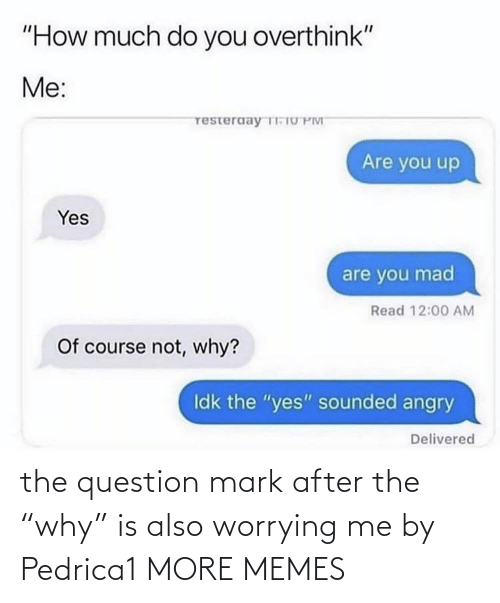 "the question: the question mark after the ""why"" is also worrying me by Pedrica1 MORE MEMES"