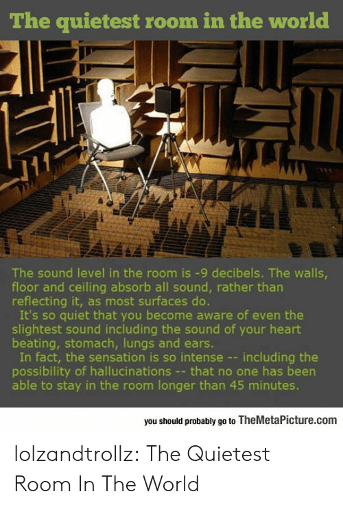 sensation: The quietest room in the world  The sound level in the room is -9 decibels. The walls  floor and ceiling absorb all sound, rather tharn  reflecting it, as most surfaces do.  It's so quiet that you become aware of even the  slightest sound including the sound of your heart  beating, stomach, lungs and ears.  In fact, the sensation is so intense --including the  possibility of hallucinations - that no one has been  able to stay in the room longer than 45 minutes.  you should probably go to TheMetaPicture.com lolzandtrollz:  The Quietest Room In The World
