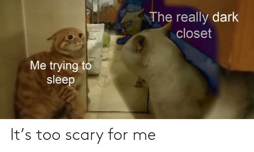 Really Dark: The really dark  closet  Me trying to  sleep It's too scary for me