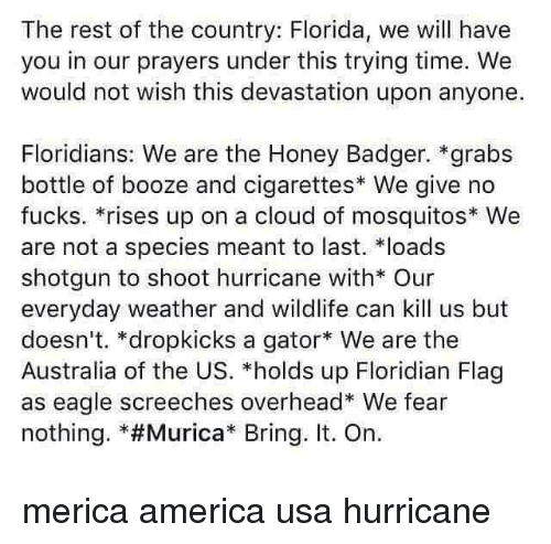"Undere: The rest of the country: Florida, we will have  you in our prayers under this trying time. We  would not wish this devastation upon anyone.  Floridians: We are the Honey Badger. *grabs  bottle of booze and cigarettes* We give no  fucks. *rises up on a cloud of mosquitos We  are not a species meant to last. loads  shotgun to shoot hurricane with* Our  everyday weather and wildlife can kill us but  doesn't. *dropkicks a gator We are the  Australia of the US. *holds up Floridian Flag  as eagle screeches overhead* We fear  nothing. *#Murica"" Bring. It. On. merica america usa hurricane"