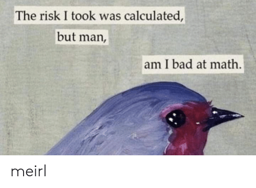 Bad, Math, and MeIRL: The risk I took was calculated,  but man,  am I bad at math. meirl