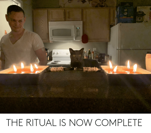 Aww Memes: THE RITUAL IS NOW COMPLETE