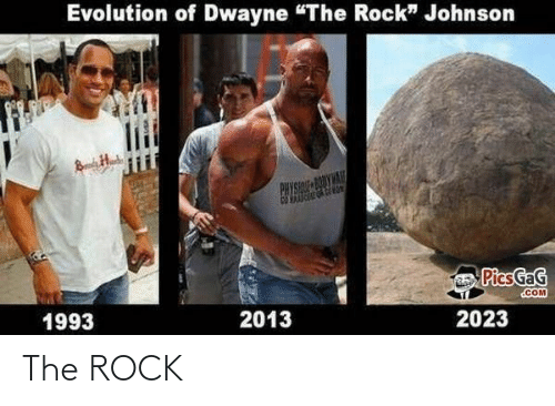 The Rock: The ROCK