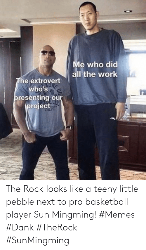 sun: The Rock looks like a teeny little pebble next to pro basketball player Sun Mingming! #Memes #Dank #TheRock #SunMingming