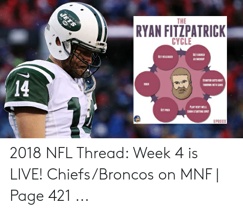 The RYAN FITZPATRICK CYCLE GET SIGNED GET RELEASED AS BACKUP STARTER
