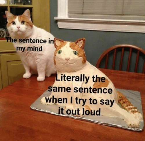 Say It, Mind, and Literally: The sentence in  my mind  Literally the  same sentence  when I try to say  it out loud