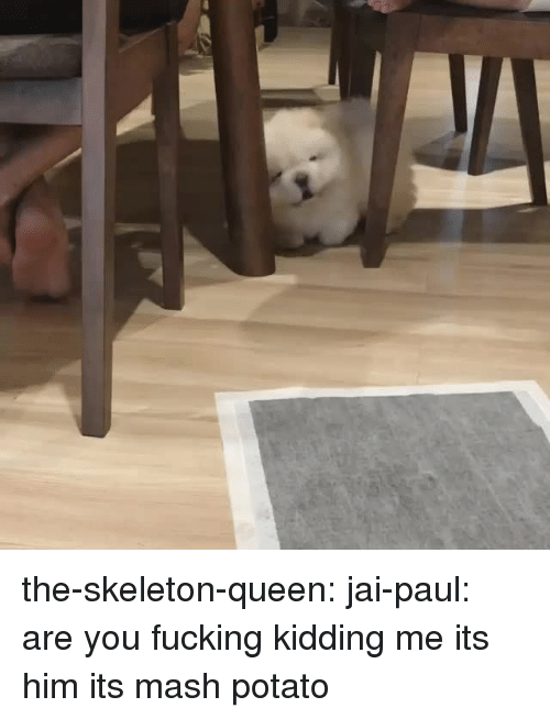 Fucking, Target, and Tumblr: the-skeleton-queen:  jai-paul: are you fucking kidding me its him its mash potato